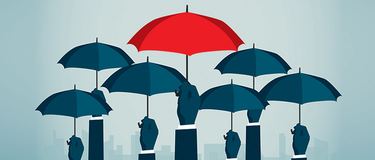 Learning, Technology & Communication Solutions for Insurance Industry
